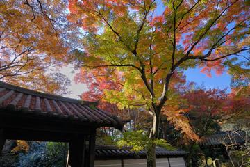 Kamakura2_1